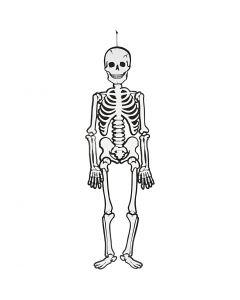 Skeleton, H: 120 cm, 300 g, white, 1 pc