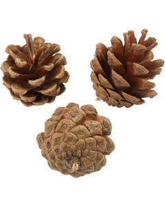 Pine Cones, D: 40 mm, 200 g/ 1 pack