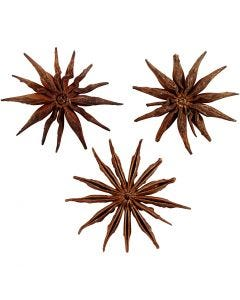 Star anise, D: 15-20 mm, 250 g/ 1 pack