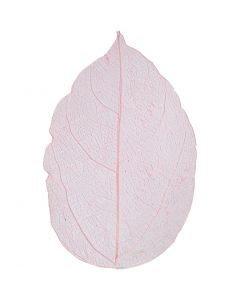 Skeleton leaves, L: 6-8 cm, light red, 20 pc/ 1 pack
