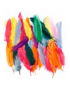 Feathers, L: 12-15 cm, assorted colours, 350 pc/ 1 pack