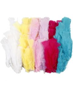 Feathers, L: 11-17 cm, assorted colours, 144 bundle/ 1 pack