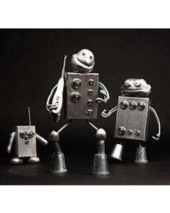 The Robots' Universe