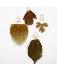 Leaves on Hard Foil Sheets