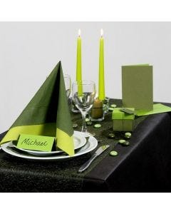 Party Inspiration with green Table Decorations etc.
