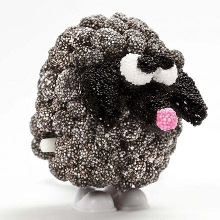 'The Black Sheep' as a moving Figure