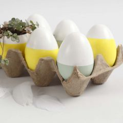 Painted Eggs and Eggs with Planting