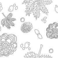 Fabric, W: 145 cm, 140 g, white/black, 1 rm