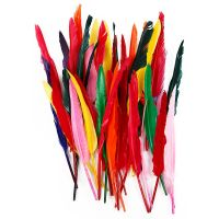 Feathers, L: 29-31 cm, assorted colours, 100 pc/ 1 pack
