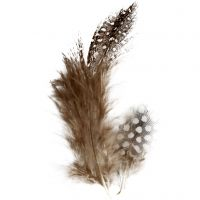 Guinea fowl feathers, brown, 3 g/ 1 pack