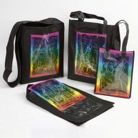 Bags with Plastic Insert Fronts