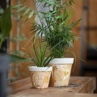 A marbled flower pot from bamboo fibre